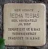 Stolperstein John-Foster-Dulles-Allee 10 (Tierg) Recha Tobias.jpg