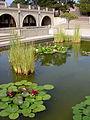 Storke Plaza Pond.JPG