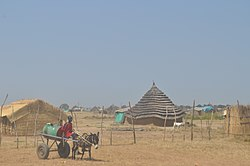 View of Abyei town, with traditional dwellings (2009).