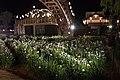 Suigo Itako Ayame Garden 25.jpg