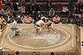 Sumo Wrestling - Tokyo.jpg