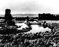 Sunnyside Canal and Mount Adams, 1906 (CURTIS 763).jpeg