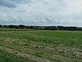 Sur le GR 121C autour Verchain-Maugré.jpg