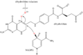 Synergistic catalysis with dihydrofolate reducase and NADP+.png