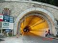 Túnel Rubens Ferreira Martins em obras - panoramio.jpg