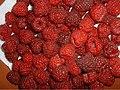T-raspberries.jpg