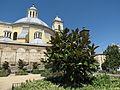 Templo de San Francisco El Grande 09012013 100.JPG