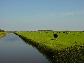 Texel (Pays-Bas)
