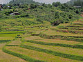 Thazi to Shwenyaung and Inle Lake (14945946779).jpg