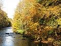 The River Allen (5) - geograph.org.uk - 598398.jpg