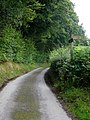 The Severn Way, looking west - geograph.org.uk - 532329.jpg