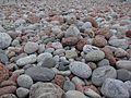 The beach in Storviken in Trysunda (7741822268).jpg