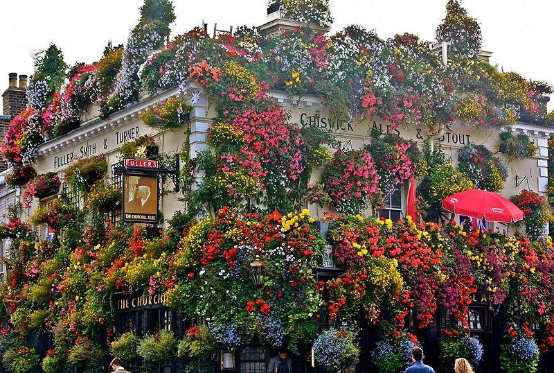 Best Thai Restaurant Castle Hill