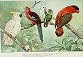 The new international encyclopaedia (1905) (14801744233).jpg