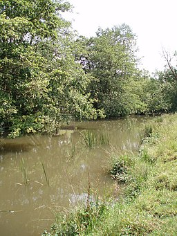 The river Chew - geograph.org.uk - 187756