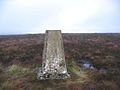The trig point near White Crags - geograph.org.uk - 290465.jpg