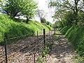 This way to Wroxham - geograph.org.uk - 1279175.jpg