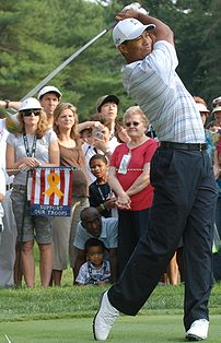 Tiger Woods, champion golfer, drives the ball ...