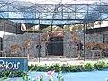 Tiger show in Samui Aquarium - Tygří show - panoramio.jpg