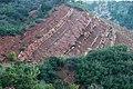 Tilted redbeds (Kayenta Formation, Upper Triassic-Lower Jurassic; Kolob Canyons area, Zion National Park, Utah, USA) 2 (8423910793).jpg