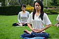 Toronto Falun Gong Exercises 1.jpg