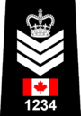 Toronto Police - Staff Sergeant.png