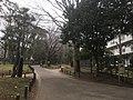 Toyama Park - various - March 2019 14 30 57 543000.jpeg