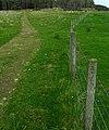 Track near Lurgabrack - geograph.org.uk - 899821.jpg
