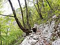 Trail Ukanc - Black Lake.jpg