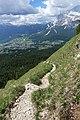Trail and Cortina.jpg
