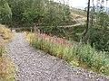 Trail in Glen Finglas Woodland Trust plantation - geograph.org.uk - 544325.jpg