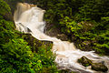 Triberger Wasserfälle (14651600200).jpg
