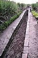 Trowulan ancient canal 1.JPG