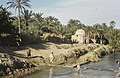 Tunis1960-040 hg.jpg