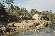 Tunis1960-040 hg