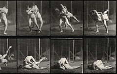 Two men wrestling. Photogravure after Eadweard Muybridge, 18 Wellcome V0048679.jpg