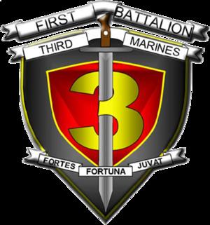 Roy Cisneros - 1st Battalion 3rd Marines