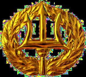 Command Ashore insignia - Navy Command Ashore Pin