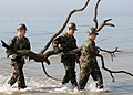 US Navy 060302-N-9246W-002 Personnel assigned to Naval Mobile Construction Battalion Seven Four (NMCB-74) remove debris from ankle-deep water off the coast of Southern Mississippi, during the Great American Cleanup event.jpg