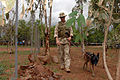 US Navy 070825-F-5735S-060 Master-at-Arms 2nd Class Douglas Kesterson and explosive detection dog Raika patrol the fence line at the Gendarme training range.jpg