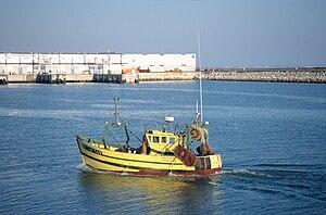 Français : Un petit chalutier de pêche côtière...