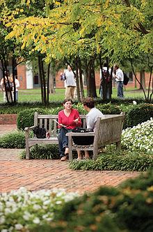 University Of Virginia Law >> University Of Virginia School Of Law Wikipedia