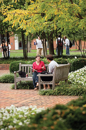 University of Virginia School of Law - Spies Garden