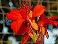 Utoquai 2012-08-08 19-48-10 (WB850F).JPG