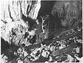 V dnu Široke jame nad Dobrepoljem 1941.jpg