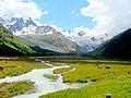Val Roseg mit Gletscher und Kühen - panoramio.jpg
