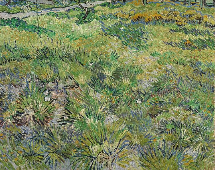 File:Van Gogh - Wiese im Garten des Hospitals Saint-Paul.jpeg