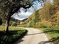 Vermes Tiergarten.jpg
