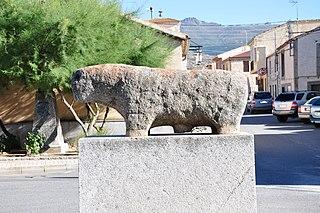 verraco de Solosancho