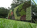 Vertical Garden from Lalbagh flower show Aug 2013 8789.JPG